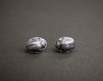 Silver Beetle Studs