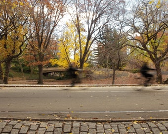 Central Park New York Cyclists Photo Print