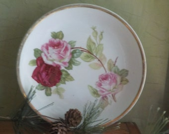 Vintage Pink And Red  Rose Germany Plate
