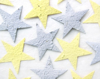 10+ BIG Silver and Gold Seed Paper Stars Wedding Favors Plantable Paper Stars - Starry Night Wedding - Astronomy Birthday Party Favors
