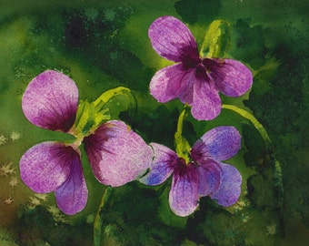 Wisconsin Violet, Watercolor Original, State Flower, Purple