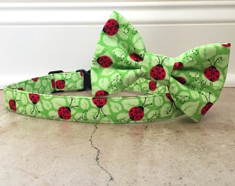 Dog collar, dog bow tie, ladybug dog collar, spring dog collar, yellow dog collar, collar bow tie, lady bug dog bow tier, bright dog collar