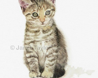 Kitten painting:  Print of watercolour painting by Jan Taylor.