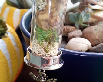 Vintage Animal Bone & Moss Terrarium Necklace