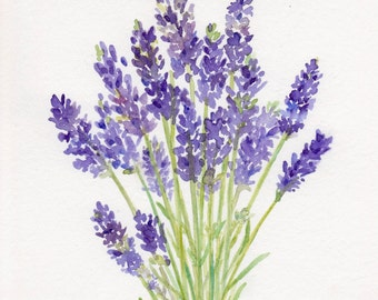 Lavender Watercolor, Lavender Bouquet, Original Painting