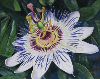Flower Painting, Flower Wall Art, Flower Art Print, Flower Watercolor, Passion Flower Art, Tropical Passion Flower Painting, Home Decor Gift