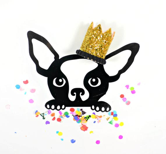 Mini Birthday Crown || Animal Birthday Hat || Dog Hat || Dog Crown || Dog Birthday Crown || Dog Birthday Hat
