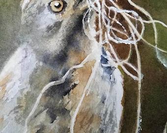 Bird Collared Palm Thrush South African ACEO Art Original Painting miniature art watercolor