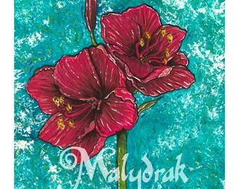 Red Amaryllis - Art Print