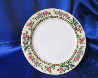 Antique Hand Decorated Limoges Plate. Housewarming Gift, Wedding Gift, Get Well Gift, Thank You Gift, Friendship Gift, Father's Day Gift