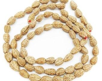 Pagsahingin seeds, Brown, 1 train, 12mm, 35 pieces
