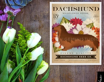 Longhaired dachshund dog Seed Company Wildflowers vintage style seed packet artwork by Stephen Fowler Giclee Signed Print