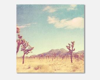 California canvas wrap, desert photography, Joshua Tree photo gallery wrapped canvas, blue yellow gold desert landscape southwest wall art