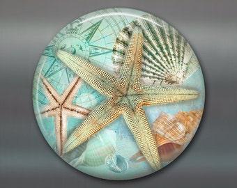 "3.5"" beach fridge magnet, starfish magnet, kitchen decor, seaside beach decor, housewarming gift, big magnet for fridge MA-BCH-3"