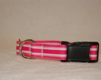 Pink Striped Dog Collar