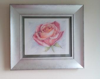 "Garden Tea Rose art/pink/orange/green/colour pencils drawing/size 15""x17""/silver framed artwork/female/mum/gran/birthday gift idea/gift art"