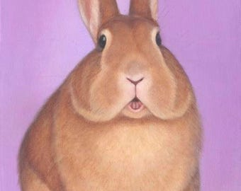 Bunny Magnet - Rabbit Magnet - Rabbit Art - Proceeds Benefit Animal Charity