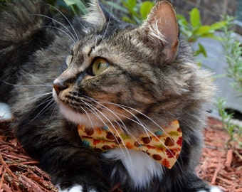 Fall leaves cat bow tie, fall cat bow tie collar, fall cat collar, kitten collar, kitten bow tie, Yellow cat bow tie, acorn cat bow tie,