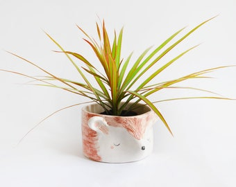 Ceramic Hedgehog planter, Flowerpot, Inside and Outside Use, with Coral and Black Details. Ready To Ship