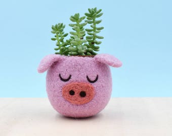 Pig planter | Small succulent pot, Pig lover gift, gift for her, succulent planter, Cactus planter gifts, cute pig decor, piggy vase