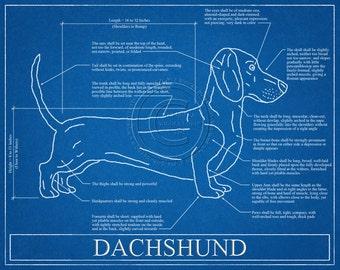 Dachshund Blueprint Elevation / Dachshund Art / Dachshund Wall Art / Dachshund Gift / Dachshund Print