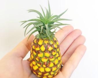 Handmade pineapple airplant holder //pineapple planter, air plant holder, airplants, pineapple decor, kawaii pineapple, pineapple charm, sun