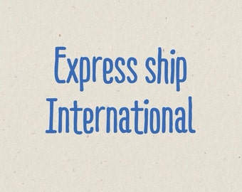 Express Shipping International