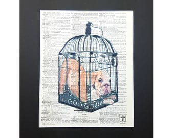 Cute Pug in Cage on Vintage Dictionary Page Art Print, Wall Decor, Digital Manipulation with Sparks of Glitter,