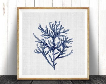 Square Beach Print, Coastal Decor, Navy Blue Seaweed Illustration, Nautical Coral, Printable Digital Download, Sea Pulp, Ocean Plant Life