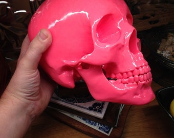 Life-Size Human Skull in Glossy Pink