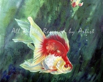 Koi Fantail Goldfish Painting Art Fish Tropical Framed Giclee Print Painting Reproduction