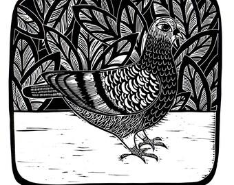Pigeon - Original Lino Artwork, Lino Print, Handmade, Limited Edition,