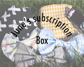 Junes monthly subscription box