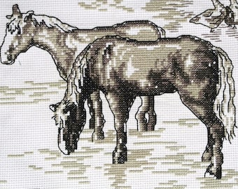 Very well done vintage 1980s unused handmade white aida cotton cross-stitch HORSE motive embroidery wall-hanging