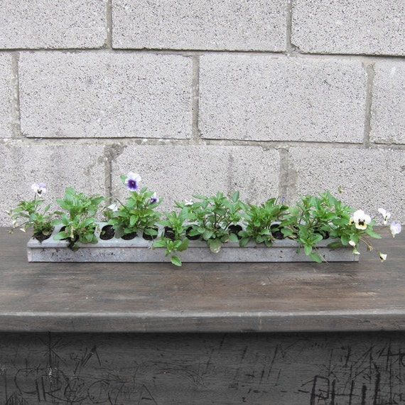 Industrial Garden Planter Flowers Window Metal Pot Plant