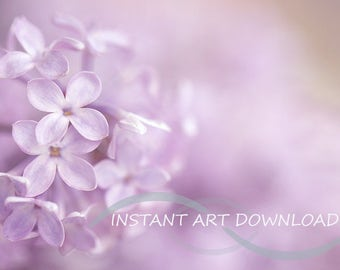 Photographers Backdrop Background Nature Purple Flowers Outdoors Spring Art Digital Download Stock Photography Prop Stock Image Photo Floral