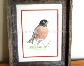 "American Robin - Framed Original Watercolor Songbird Painting, Double Matted, 13 3/4"" x 16 1/2"""