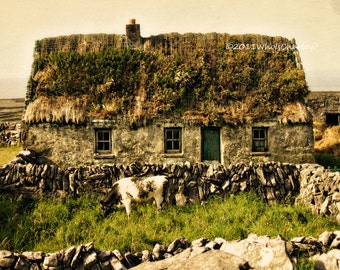 Photography print. THATCHED ROOF COTTAGE, with Cow. Irish Landscape. Ireland Photo, Fine Art Photography, Aran Islands, 8 x 10