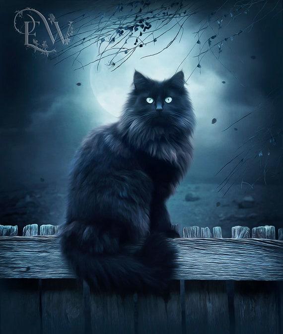 Black cat fantasy art print by enchanted whispers