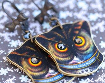 Color Owl Earrings