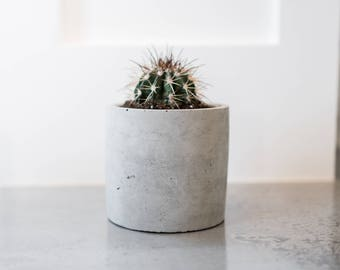 Concrete Succulent Pot   Cactus Planter   Minimalist   Modern   Plant   Indoor   Outdoor   Medium