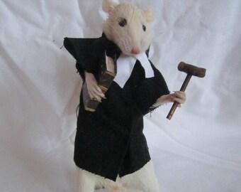 taxidermy rat lawyer taxidermy rat oditties curiosity