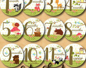 Baby Monthly Milestone Stickers - Woodland