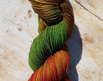 Molly on crazy8 superwash merino hand dyed yarn