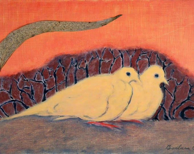 Doves Huddled