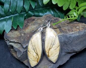 Picture Jasper earrings