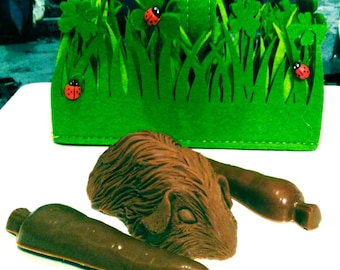 Chocolate guinea pig and carrots gift basket