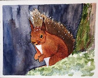 Watercolor Red Squirrel