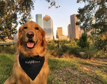 HoUSton Strong Bandana Texans NFL Team Spirit || Classic Tie Pet Scarf Personalized Puppy Gift || Three Spoiled Dogs