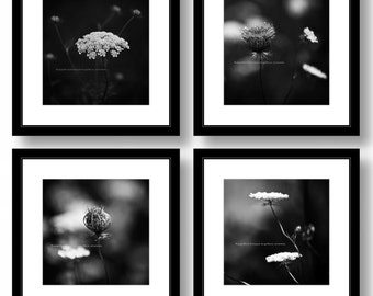 Set of 4  Square Photographs, Black and White FLOWER Photography,12 x 12 inch Ready for Ikea Ribba Pre-matted 20x20 inch Frame, Office Decor